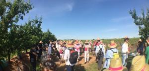 en famille ou entre amis, les Vignes Toquées sont un rendez-vous conviviale