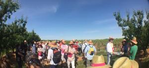 plus de 2400 personnes se sont balader à travers les vignes pour cette 7e édition