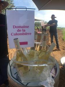 vins blancs, rosés, rouges, les amateurs de vins ont pu déguster 33 vins différents