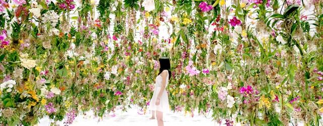 Une forêt de fleurs suspendues qui créent un dôme au dessus de la tête des visiteurs