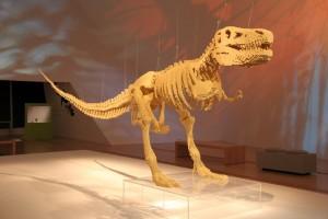Un t-rex de 6m de long à base de lego