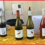 Les jolies bouteilles du caviste Les Vins du Lézard