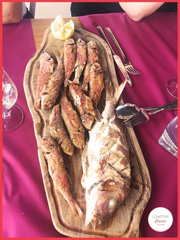 amateur de poisson, laissez vous tenter par de belles parrilladas