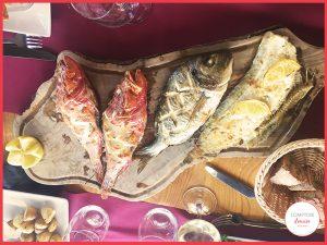 le poissonnier se rend directement à la Criée de Sète pour proposer le meilleur poisson