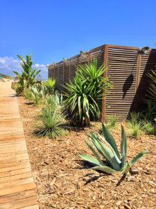 Jardin exotique à l'entrée de la Pampa