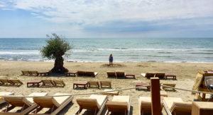 Déjeuner sur la plage pendant que les enfants vont s'amuser sur le sable