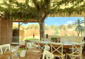 La Pampa Plage vous accueille donc dans une décoration tropicale résolument dans l'air du temps