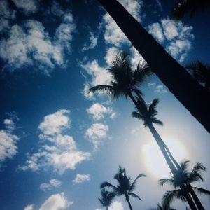 chaleur et beau temps en plein mois de janvier en république dominicaine