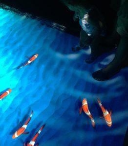 parcours ludique pour les enfants au planet océan montpellier