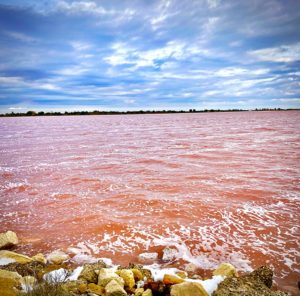 le salin d'aigues mortes et son eau rose